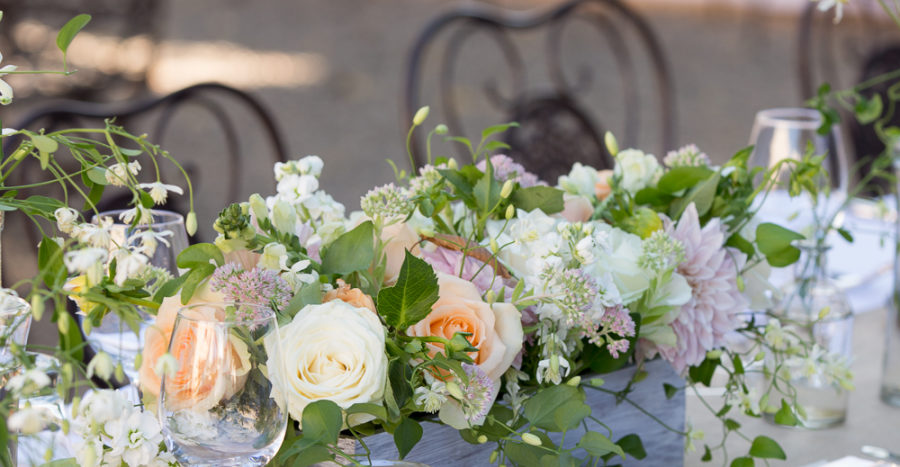Al Fresco Healdsburg Wedding